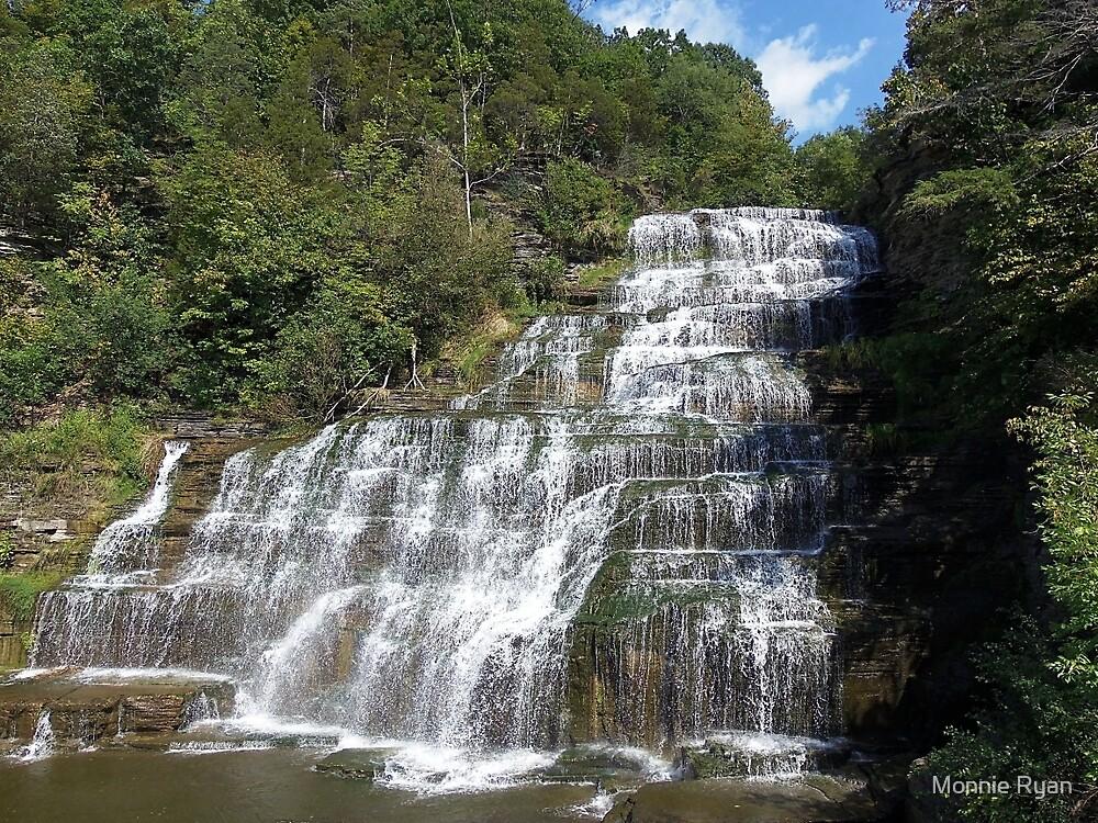 Hector Falls by Monnie Ryan