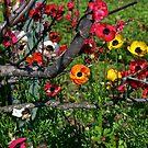 Spring Flowers II by mypic