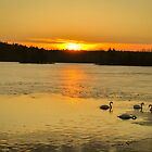 Sunset on Mill Pond by Rebecca Bryson