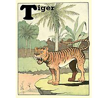 Tiger Roars in the Jungle Photographic Print