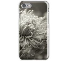 When Love Whispers iPhone Case/Skin