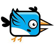Little Squared Blue Bird Photographic Print