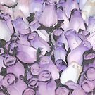 A Bed of Tulips by Sherry Hallemeier