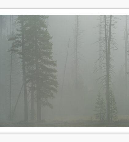 Forest Fire Fog Sticker