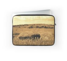 Southward View 3 Laptop Sleeve