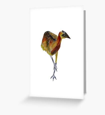 baby cassowary Greeting Card