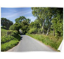 Road to the leafy portal and beyond. Poster