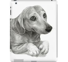 Graphite Pencil portrait drawing of Peanut the Dachshund iPad Case/Skin
