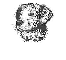 Puppy Pencil Drawing Photographic Print