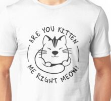 Are you Kitten me Right Meow - Funny Cat Lover Unisex T-Shirt