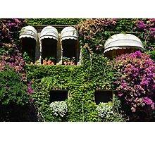 Facade covered in colorful vegetation Photographic Print