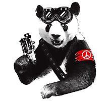 Panda Hero Photographic Print