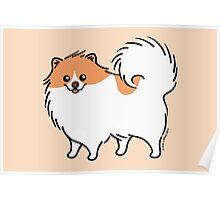 Cute Pomeranian Puppy Dog Poster
