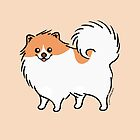 Cute Pomeranian Puppy Dog by zoel