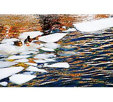 Ice Floes in Sweden, Stockholm Photographic Print