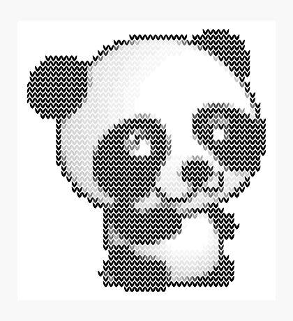 knitted sweater panda Photographic Print