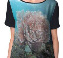 Pink gorgonian Chiffon Top