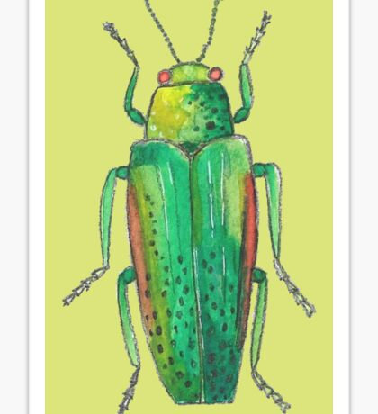 Insect drawing Sticker