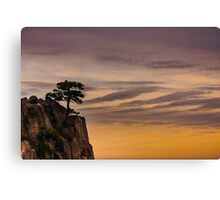Tree on Cliff Canvas Print