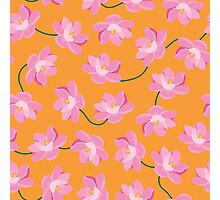 Magnolias in Spring Photographic Print