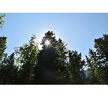 Sunburst at Waterton Lakes Photographic Print