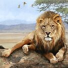 kopje rock-- african lion reclining by R Christopher  Vest