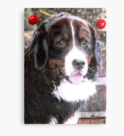 Burmese Mountain Dog Christmas Canvas Print