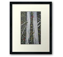 Runes of nature Framed Print