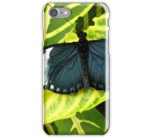 Why calling it an Insect ? iPhone Case/Skin