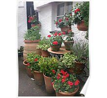 Red Geranium Cottage Poster
