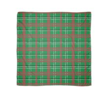 Artist Plaid_ Red and Green Scarf