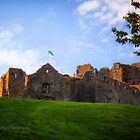 Oystermouth Castle - Wales by Yannik Hay