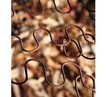 Rusted wavy wire over fall leaves - 2016 Photographic Print