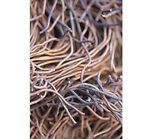 Cut metal wires - 2016 Photographic Print