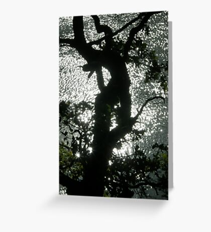 dancing light Greeting Card