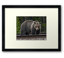 I'm not talking to myself; it's a Bluetooth®. Framed Print