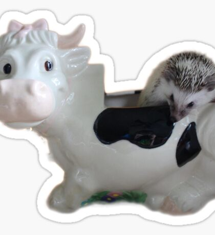 Hedgehog Cookie Jar  Sticker