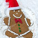 Christmas Snow Angel by Maria Dryfhout
