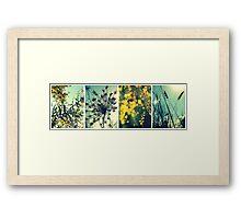 Wander Through Spring Framed Print