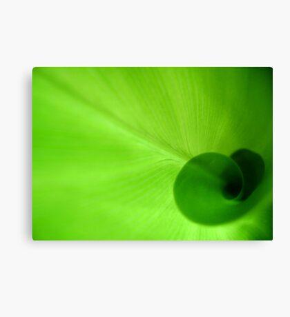 Green Heart Canvas Print