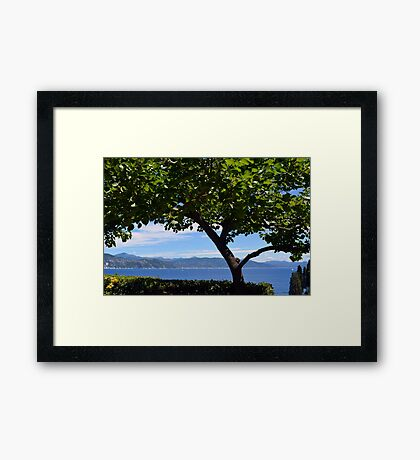 Beautiful natural landscape with the Ligurian Sea from Portofino. Framed Print