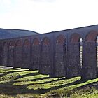 An engineering feat at Ribblehead by Funkylikeabee