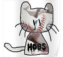 Baseball Hobs Poster