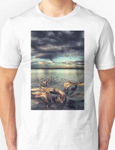 driftwood Unisex T-Shirt