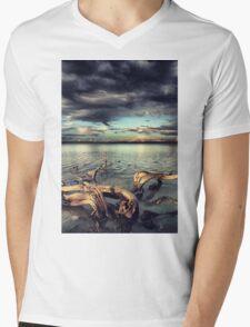 driftwood Mens V-Neck T-Shirt