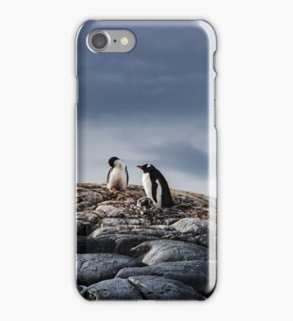 Upon the nest iPhone Case/Skin