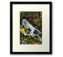 Clearwater Falls Framed Print