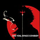 See You, Space Cowboy by Schwaz