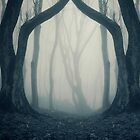 Haunted Halloween forest with fog by fineartnature