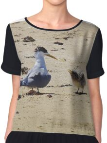 Greater Crested Tern and Chick Chiffon Top
